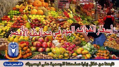 Photo of تعرق على أسعار الفواكه اليوم الأربعاء في الأقصر
