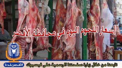 Photo of تعرف على أسعار اللحوم اليوم الأربعاء في الأقصر