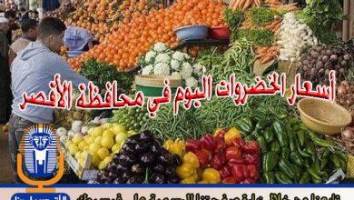 Photo of أسعار الخضروات اليوم الخميس 5 / 7 / 2018 في الأقصر