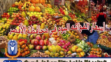 Photo of أسعار الفواكه اليوم الأربعاء 4 / 7 / 2018 في الأقصر