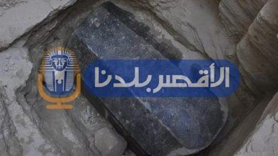 "Photo of الدكتور مصطفى وزيري يكشف حقيقة العثور على زئبق أحمر داخل تابوت الاسكندرية ""فيديو"""