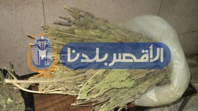 Photo of رئيس مباحث البياضية يتمكن من ضبط تاجر مخدرات بحوزته 8 لفافات بانجو