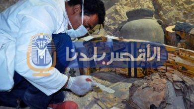 """Photo of بعد اكتشاف """"جبنة أثرية"""" بسقارة.. """"الأقصر"""" تحتل المرتبة الأولى  في العثور على الأطعمة الفرعونية"""