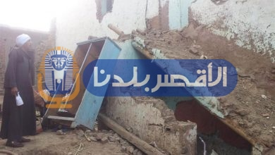 "Photo of ""الزراعة"" تشن حملة لمقاومة النمل الأبيض بحاجر الأقالته"