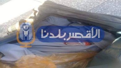 Photo of بالصور.. العثور على طفل حديث الولادة ملقى داخل حقيبة باسنا