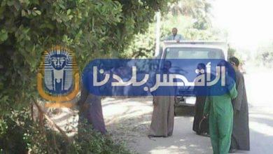 """Photo of حملة تجميل لطريق """"مصر – أسوان"""" بمركز اسنا"""