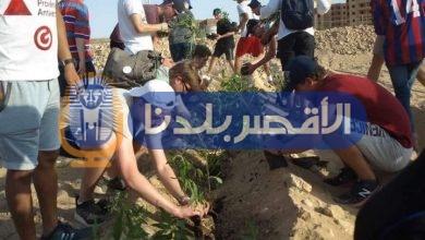 Photo of متطوعون من جامعات ومدارس المانية يزرعون 1300 شجرة بالأقصر