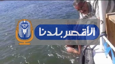 Photo of انجليزي وباحثون أثريون ينقذوا حياة أم وطفلها من الغرق في نهر النيل بالأقصر