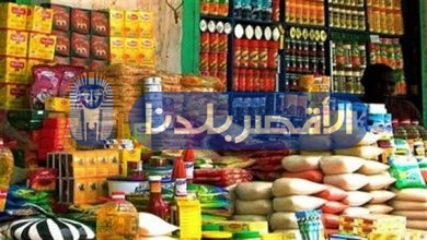 Photo of تموين الأقصر تضبط 750 كيلو أغذية و25 كيلو فراخ فاسدة بإسنا