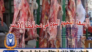 Photo of أسعار اللحوم اليوم الخميس 15 / 11 / 2018 في الأقصر