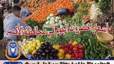 Photo of أسعار الخضروات اليوم السبت 1/ 12 / 2018 في الأقصر