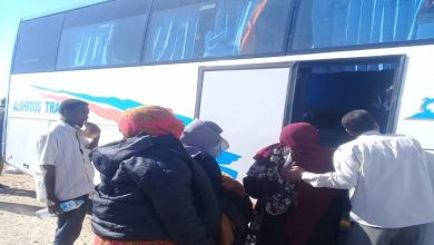 Photo of لاستئناف رحلتهم.. توفير أتوبيس بديل للناجين السودانيين من حادث اسنا