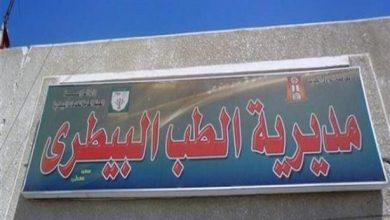 Photo of «بيطري الأقصر» يعلن عن سلسلة من الندوات الإرشادية لتوعية طلبة المدارس