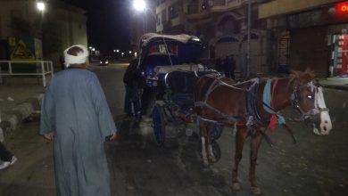 Photo of حملة مكبرة لضبط عربات الحنطور المخالفة بدون لوحات معدنية  بالأقصر
