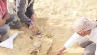 "Photo of ""الأثار""..تنفي وجود ""الزئبق الأحمر"" بالمقابر الفرعونية"