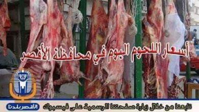 Photo of تعرف علي .. أسعار اللحوم اليوم الاحد 14 /4 / 2019  في الأقصر