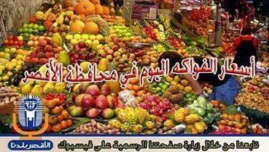 Photo of أسعار الفواكه اليوم الاحد  14 / 4 / 2019  في الأقصر..تعرف علي