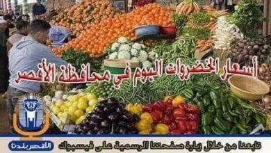 Photo of تعرف علي .. أسعار الخضروات اليوم الاحد  14/ 4 /2019   في الأقصر