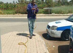 Photo of لليوم الثاني على التوالي إستمرار أعمال التعقيم بكافة أنحاء الزينة