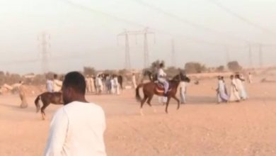Photo of القبض على تسعة أشخاص بإسنا لإختراقهم القانون وإقامة سباقات للخيول