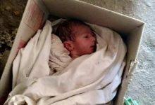 Photo of العثور علي طفل حديث الولادة داخل كرتونة بالاقصر